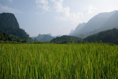 Countryside near Muang Ngoi